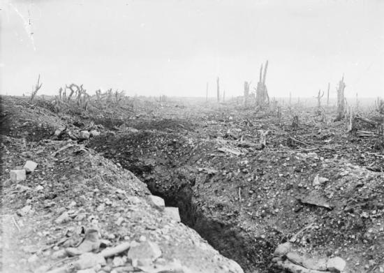 WesternFront Trenches
